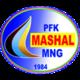 Mashal Muborak