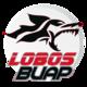 Lobos BUAP